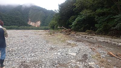 岩泉道路と田んぼ